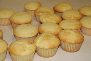 How To Make Vagina Cupcakes