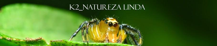 K2_Natureza