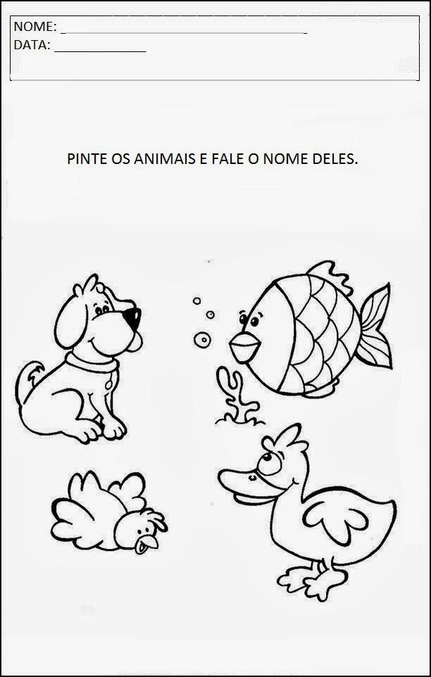 Projeto Animais - Pinte os animais