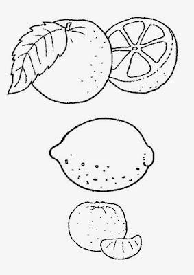 Stampa e colora agrumi for Calendario concimazione agrumi
