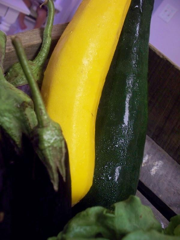 eggplant summer squash