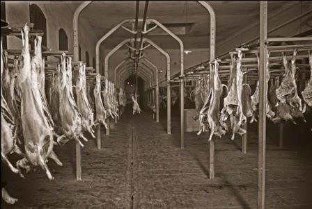 Escorxador-Sabadell-any1925