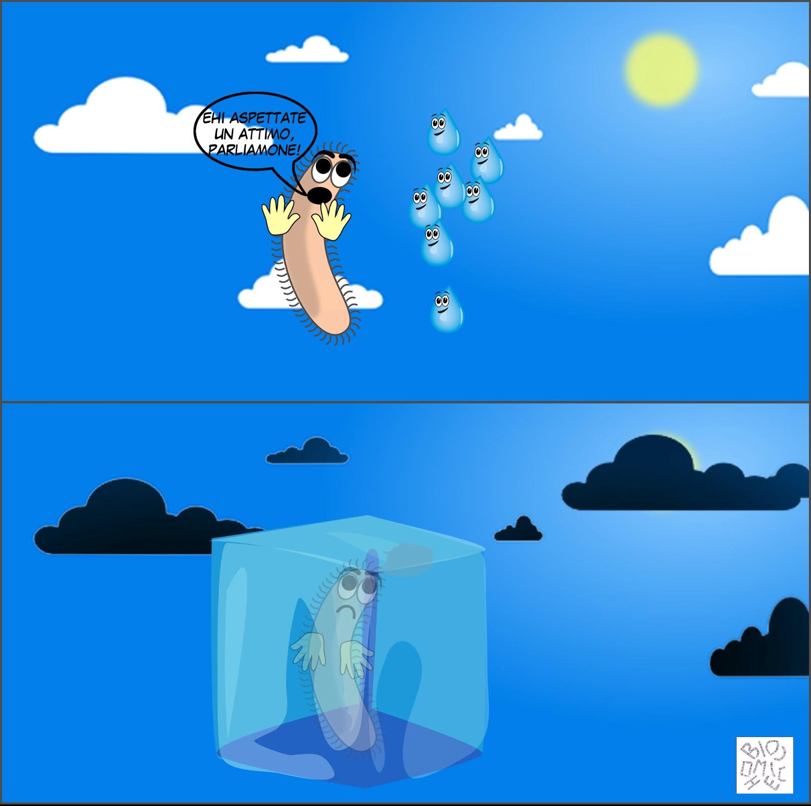batteri che inseminano le nuvole e causano la pioggia vignetta