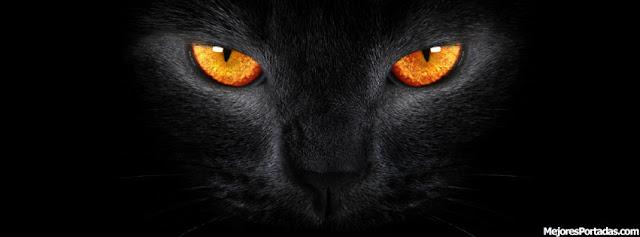 Ojos gato negro - ÷ Las Mejores Portadas para tu perfil de Facebook ...