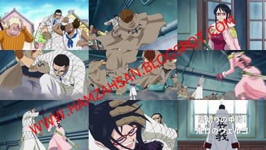 One Piece Episode 606 Subtitle Indonesia