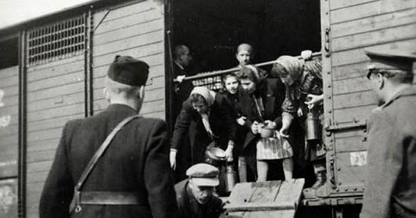 the holocaust effects of dehumanization in
