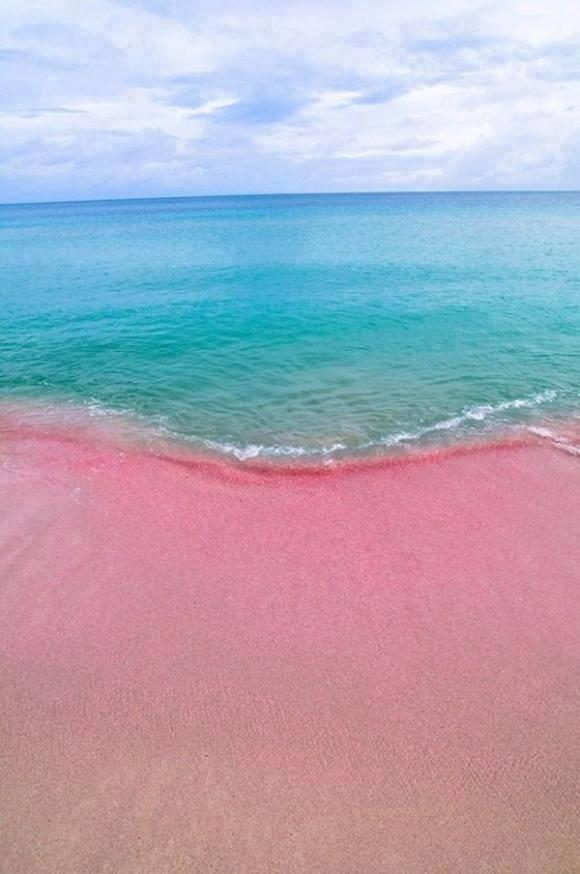 http://www.liataja.com/2015/06/uniknya-pantai-pasir-pink.html