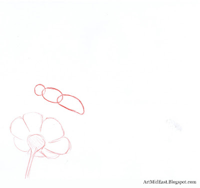 how to draw a butterfly step by step realistically