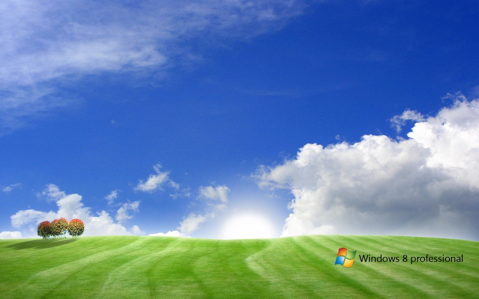 http://1.bp.blogspot.com/-Ypg7jYDrBlY/T2lS5F-j7_I/AAAAAAAACME/fuoQWyNIVhA/s1600/Tutorialsall-HD-windows-8-wallpaper-7.jpg