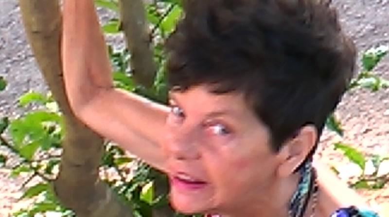 Teresa Jardim / 2015