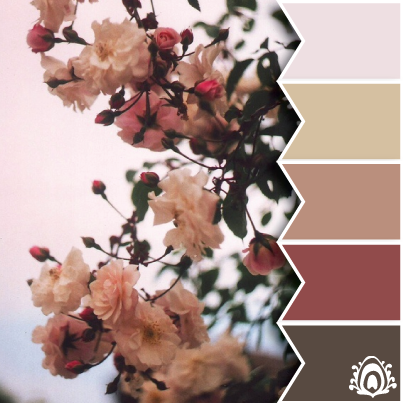 MUTE TONES - color palette pink, brown, flower, soft, pastel feather studio