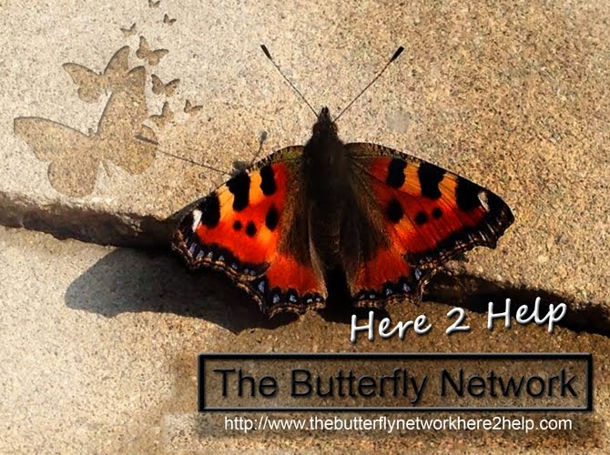 The Butterfly Network Here2Help