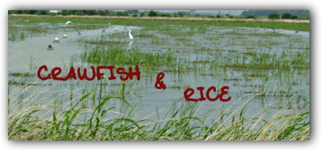 Crawfish & Rice: Side Dishes