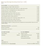 Wells Fargo Advantage International Bond A (ESIYX)
