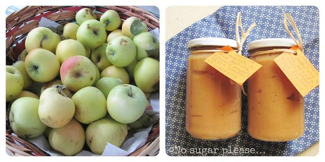mousse di mele fatta in casa