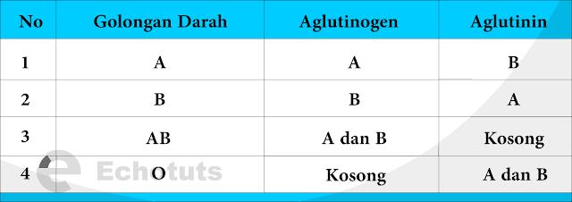 Golongan darah faktor golongan darah - echotuts
