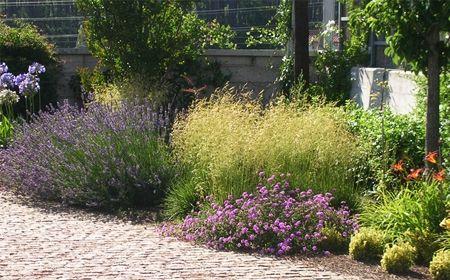 C mo hacer un jard n en casa - Como preparar un jardin en casa ...