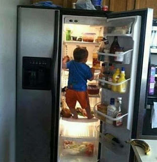 funny picture: child rummaging in the fridge