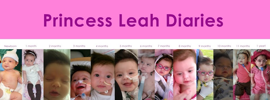 The Princess Leah Diaries