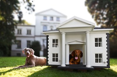 Cool and Creative Dog Mansions (15) 1