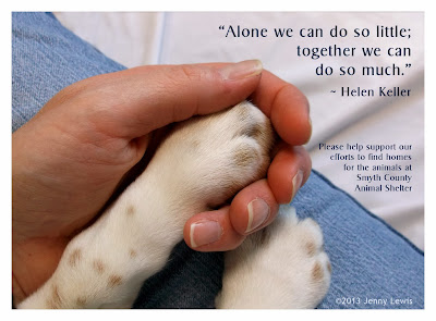 "Photo of a dog's paw in Mommy's hand ""Alone we can do so little, together we can do so much."" quote by Helen Keller"