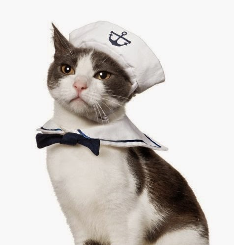 Halloween Costumes for Cats - Cat Sailor Costume