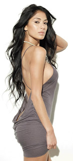 Nicole Scherzinger Wallpapers