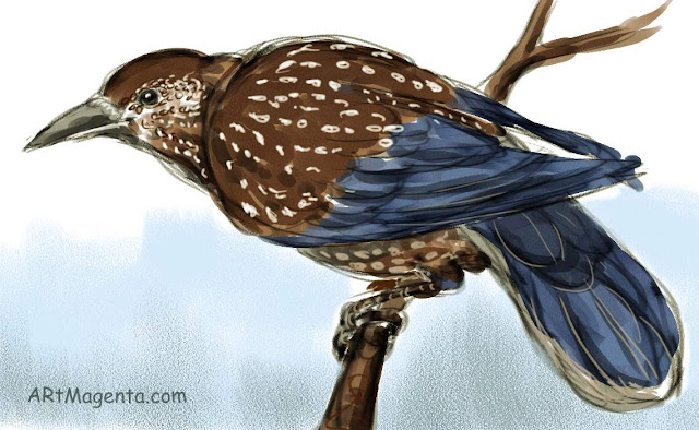 En  fågelmålning av en Nötkråka  från Artmagentas svenska galleri om fåglar
