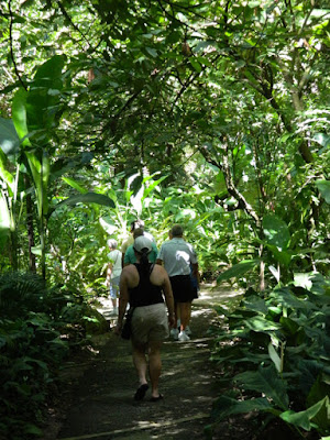 Soufriere St. Lucia  Diamond Botanical Gardens path by garden muses-not another Toronto gardening blog