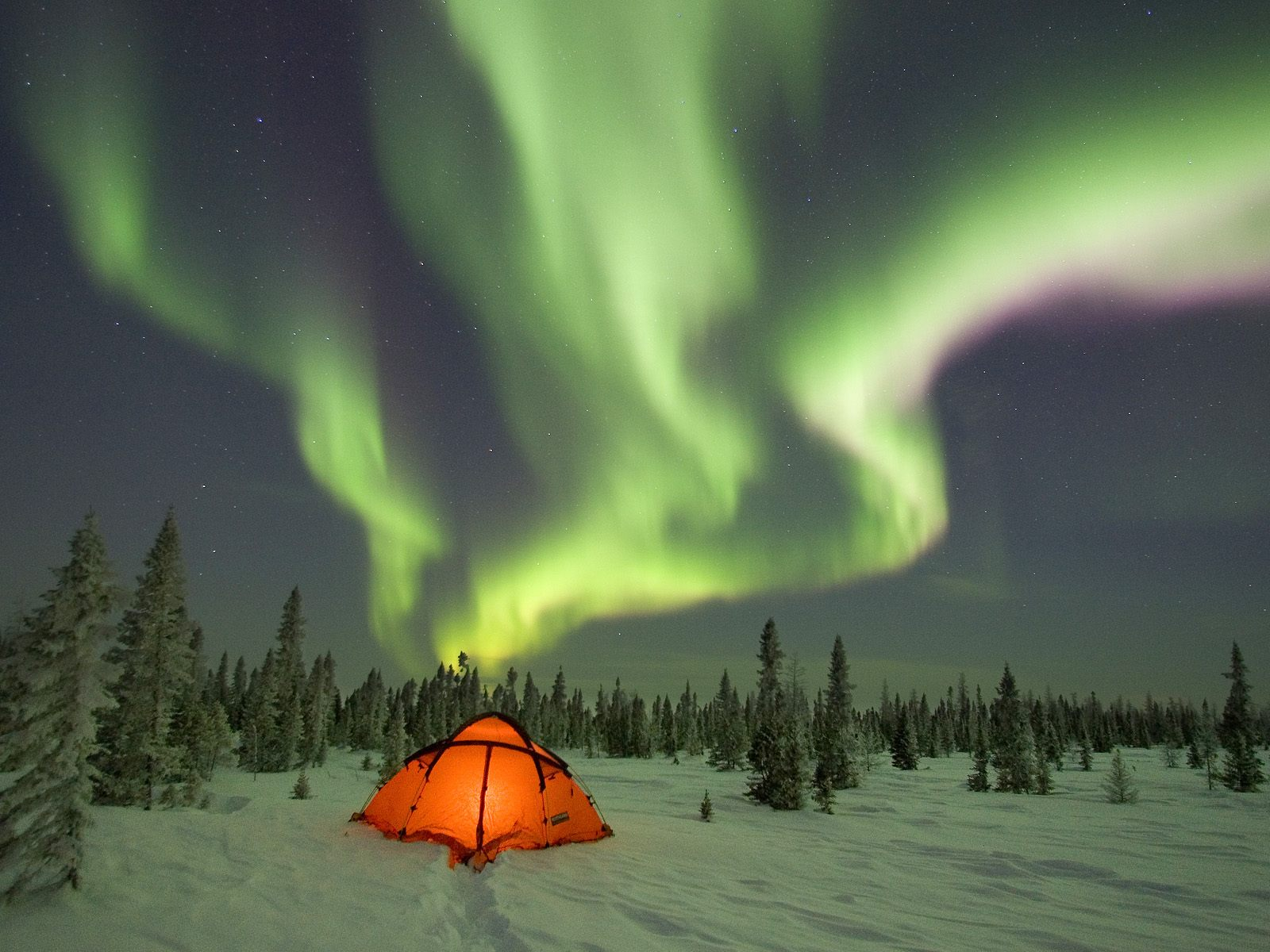 Northern Lights Camping wallpapers