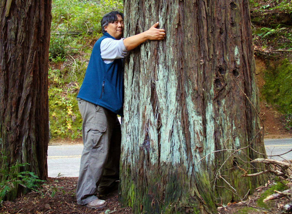 Science Proves Hugging Trees Is Good for Health