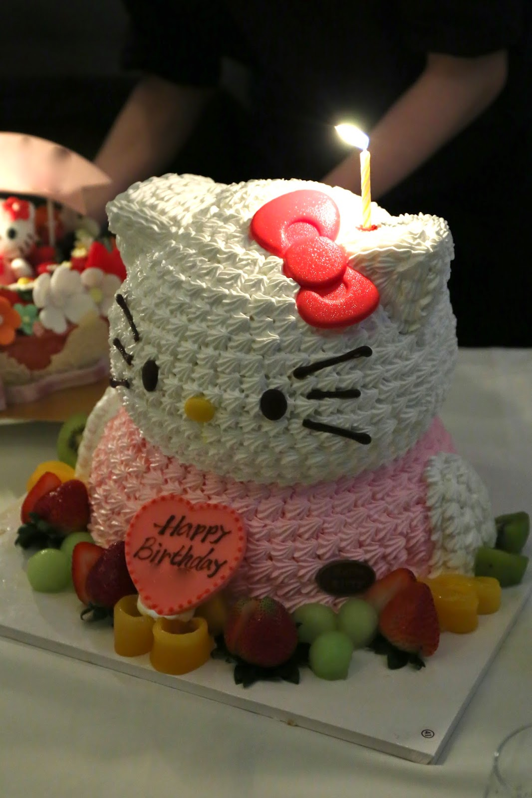 Diary of a Growing Boy Hello Kitty birthday x2