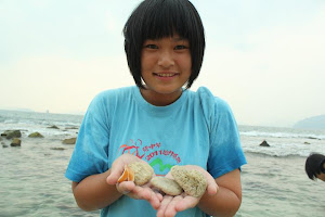 我在sabah海滩捡到的石头