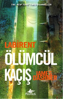 https://www.goodreads.com/book/show/20527424-labirent