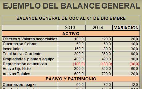 Ejemplo De Un Balance General Proforma