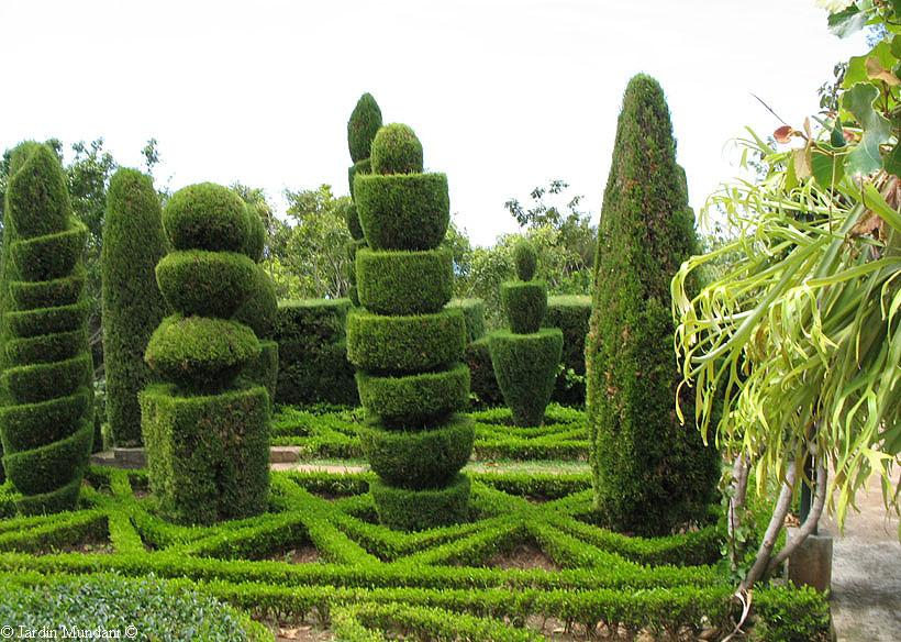 Palabras magicas jardines de cipreses for Pinos para jardin