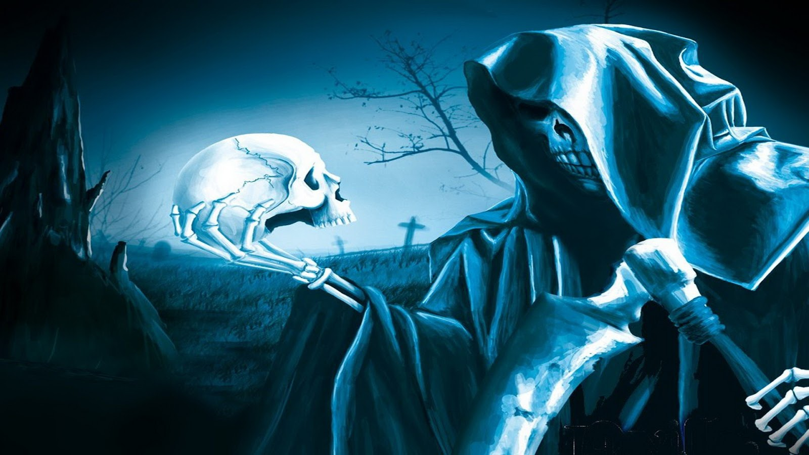 skull wallpaper wallpapers hd - photo #23