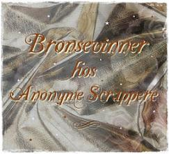I am a Bronze Winner at Anonyme Scrappere