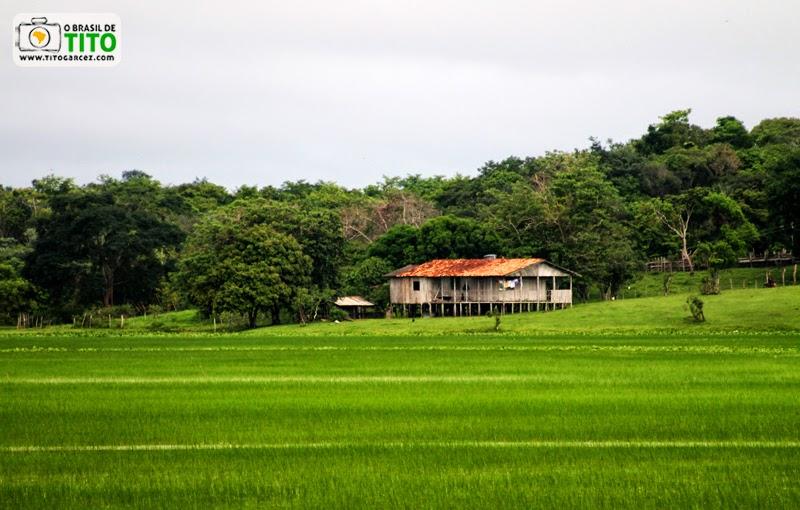 Casa na APA do Rio Curiaú, em Macapá, no Amapá