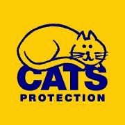 Cats Protection Camberley
