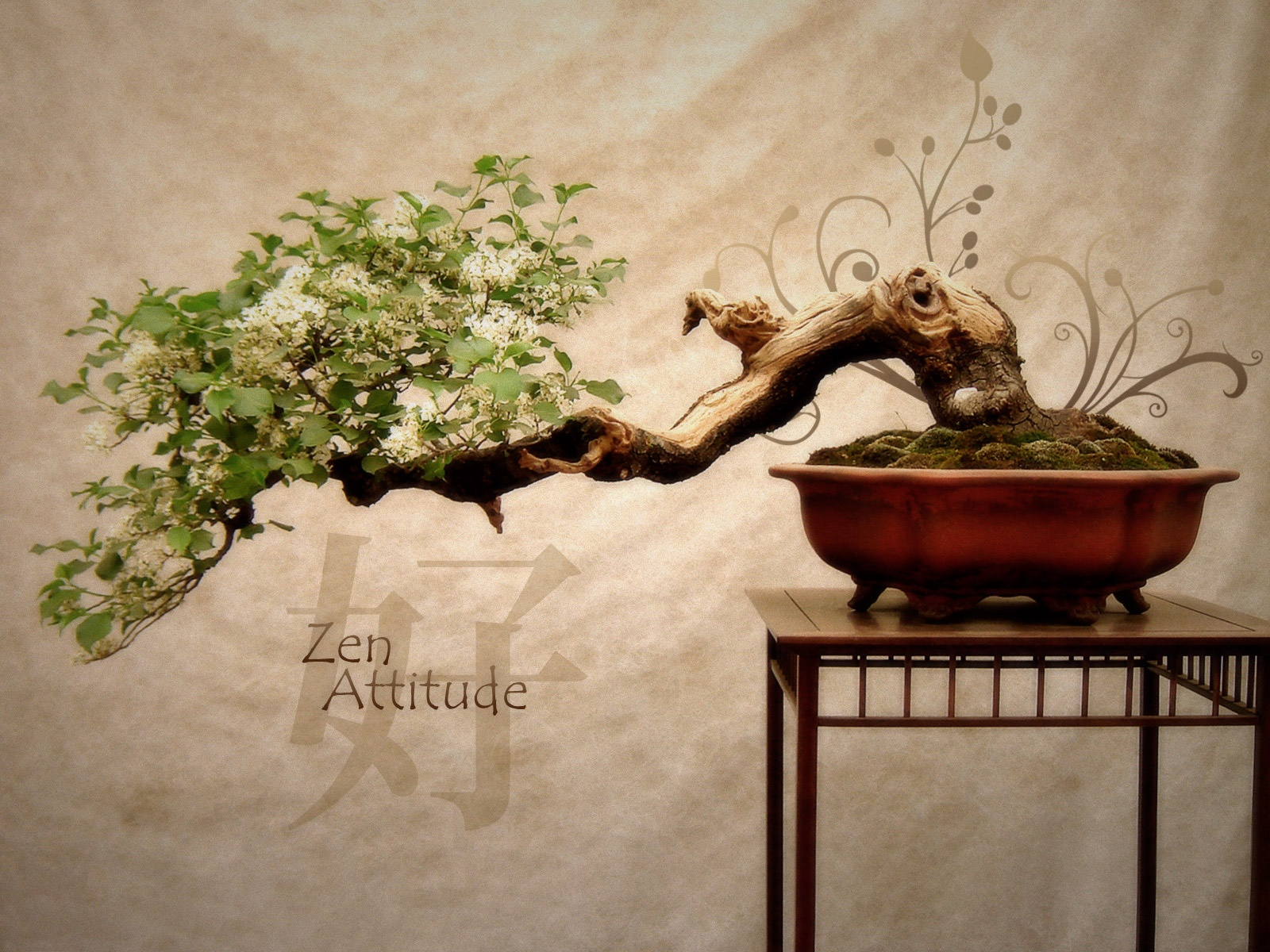 wallpaper: Zen Garden ...