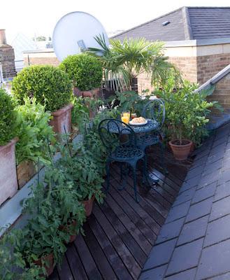 balkon zielony