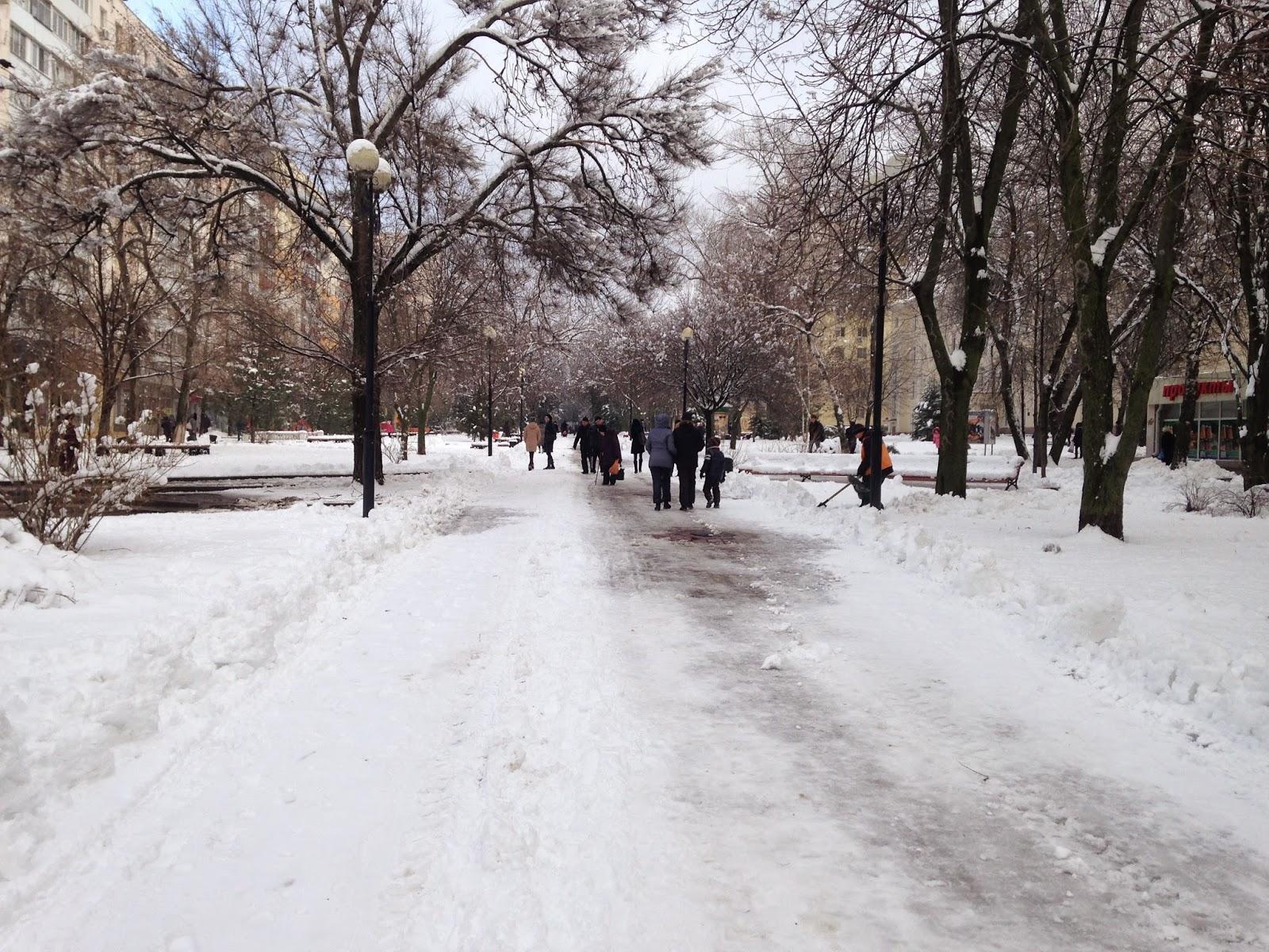 5-01-2014-Ростов-на-Дону