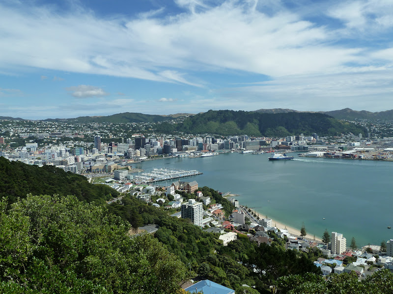 View of wellington from mt victoria