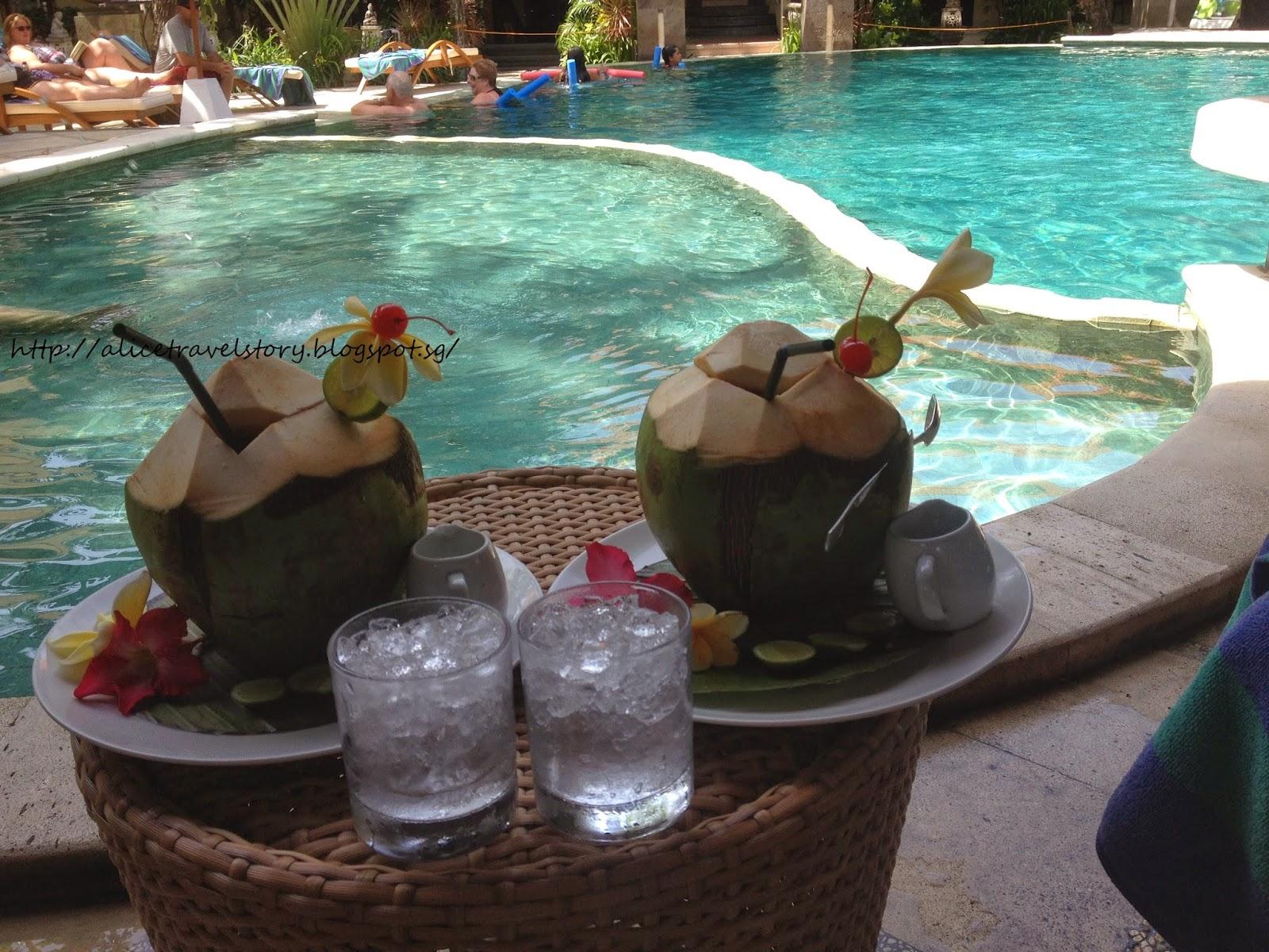 Alice Travelogue Bali 2014