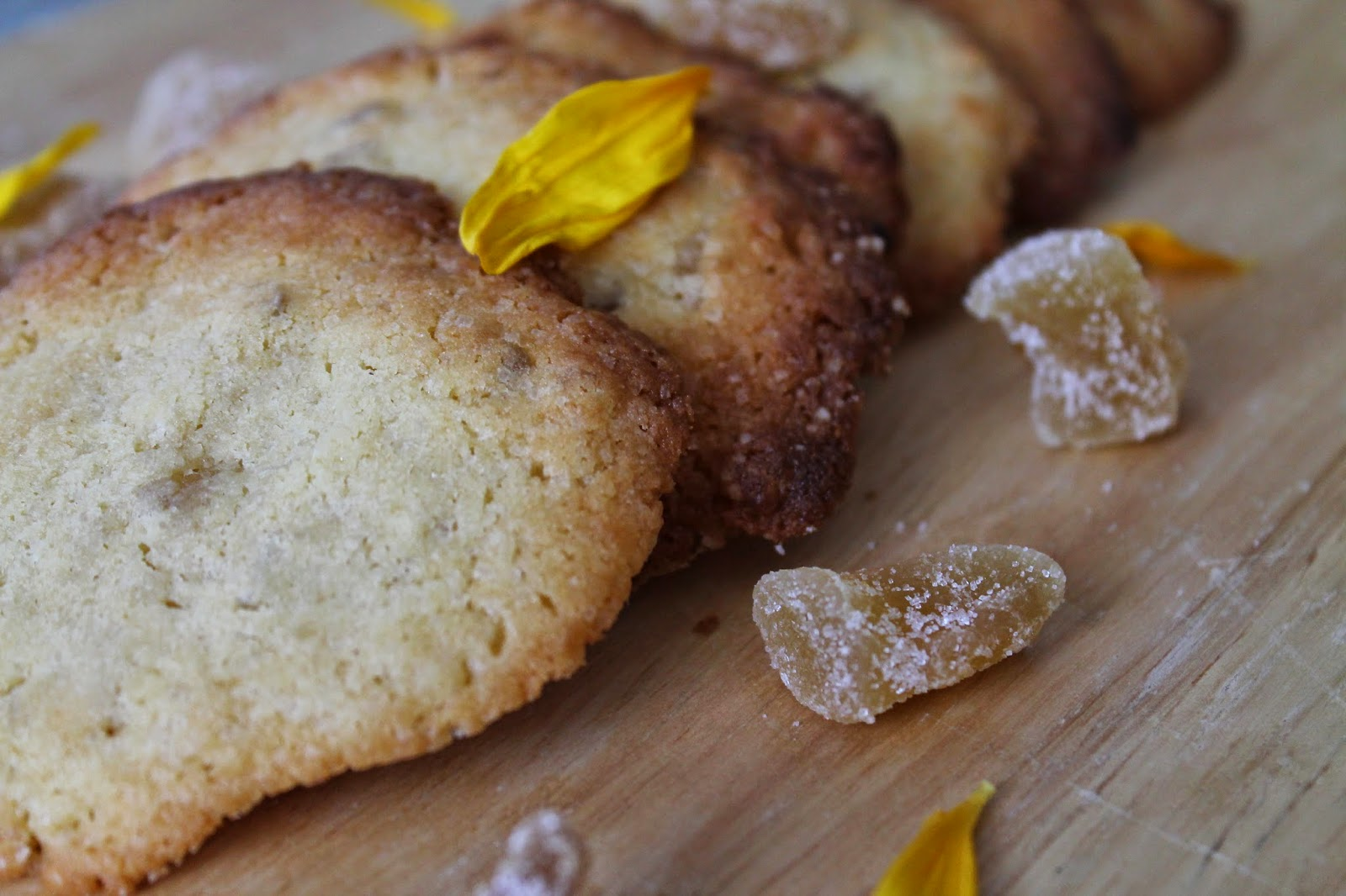 Rezept Ingwer Cookies / Recipe Cookies with Ginger / Foodblogger / Austria / Östereich / Kärnten / Carinthia / Klagenfurt/ Köttmannsdorf / Delicious Recipe for Cookies / Rezept für Cookies /