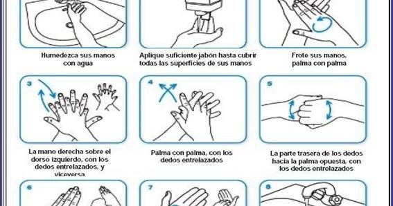 Frosty normas de higiene personal utensilios y equipos for Lavado de manos en la cocina