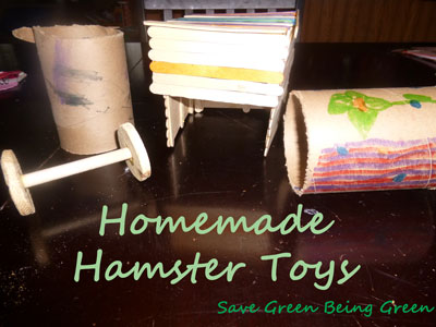 Some cool homemade hamster toys - YouTube