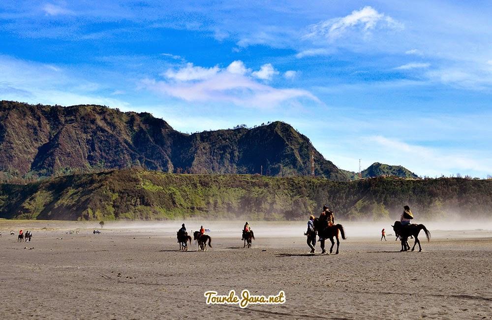 berkuda di lautan pasir Bromo