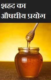 Benefits of Honey in Hindi, शहद का उपयोग , shahad ke labh or fayde, शहद के लाभ, शहद का औषधीय प्रयोग, शहद के फायदे, medicinal use of honey in hindi,